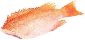 Окунь морской с/м 200/300 вес