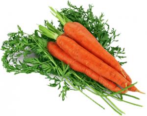 Морковь свежая вес.