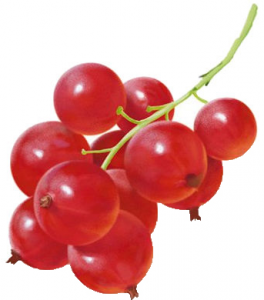 Красная смородина с/м вес.